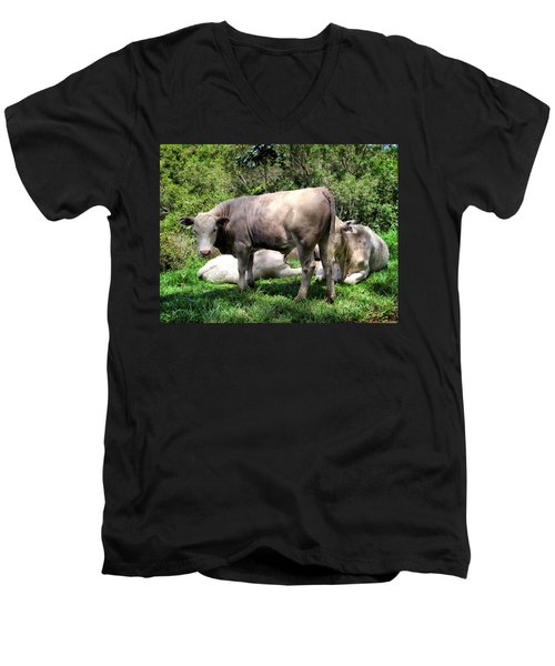 Men's V-Neck T-Shirt featuring the photograph Cow 5 by Dawn Eshelman