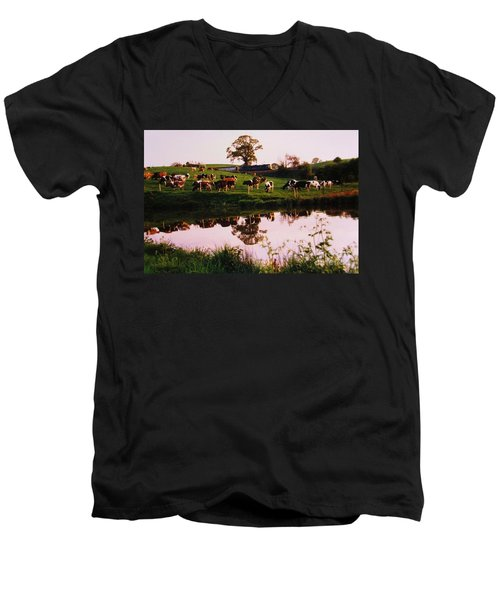 Cows In The Canal Men's V-Neck T-Shirt