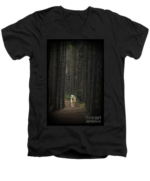 Coyote Howling In Woods Men's V-Neck T-Shirt by Dan Friend