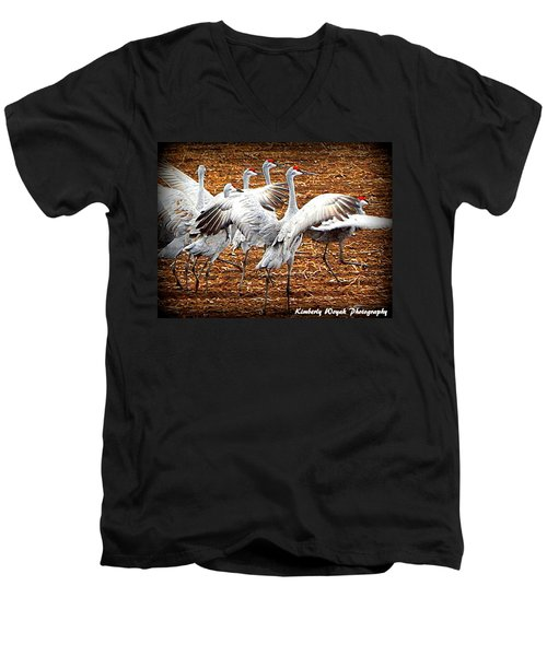 Crane Ballet  Men's V-Neck T-Shirt