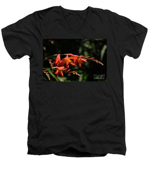 Crocosmia 'dusky Maiden' Flowers Men's V-Neck T-Shirt