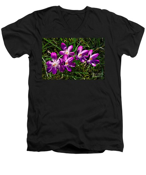 Crocus In The Grass Men's V-Neck T-Shirt