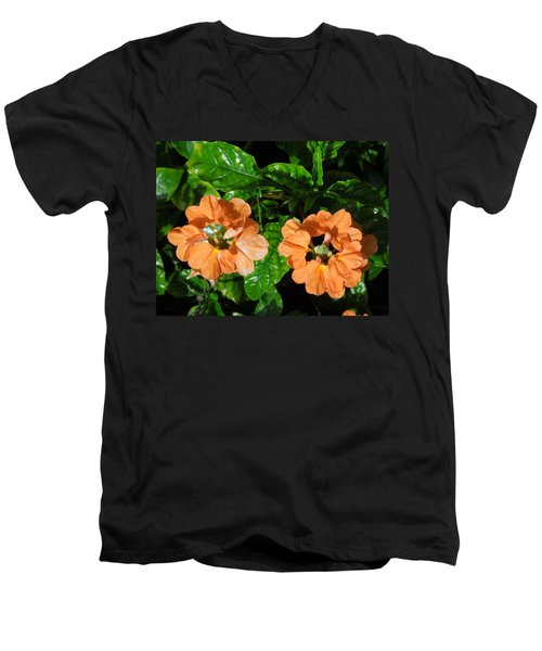 Men's V-Neck T-Shirt featuring the photograph Crossandra by Ron Davidson