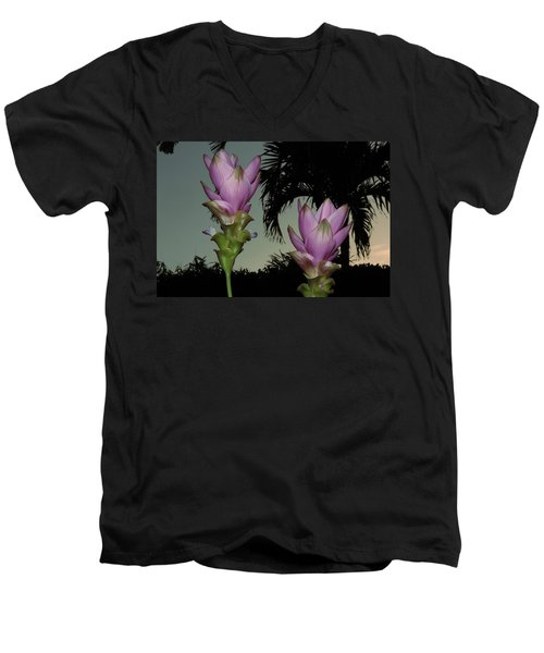 Curcuma Hybrid Flowers Men's V-Neck T-Shirt by Greg Allore