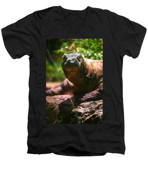 Curious Komodo Men's V-Neck T-Shirt by Lon Casler Bixby