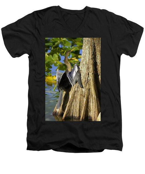 Cypress Bird Men's V-Neck T-Shirt by Laurie Perry