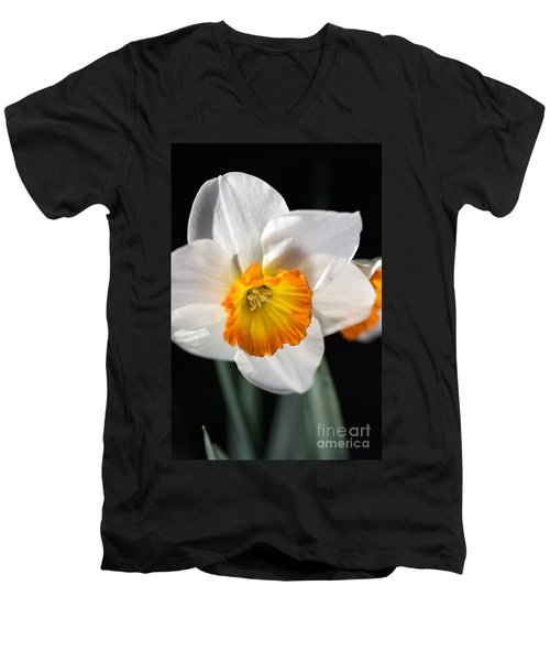 Daffodil In White Men's V-Neck T-Shirt