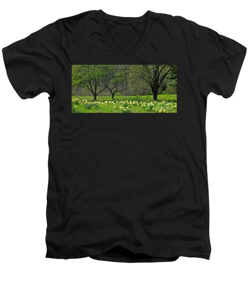 Men's V-Neck T-Shirt featuring the photograph Daffodil Meadow by Ann Horn