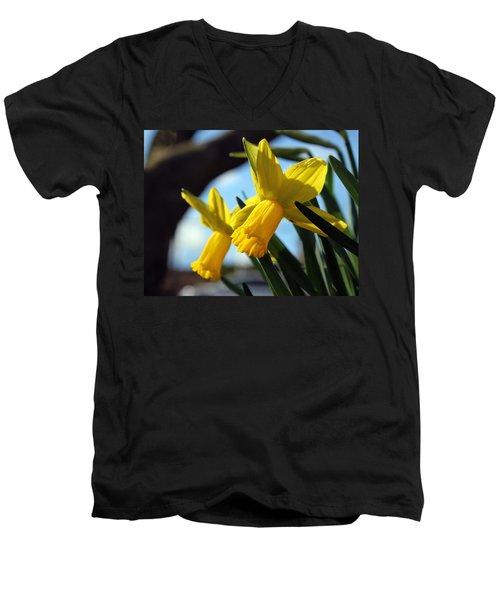 Daffodils Men's V-Neck T-Shirt by Joseph Skompski