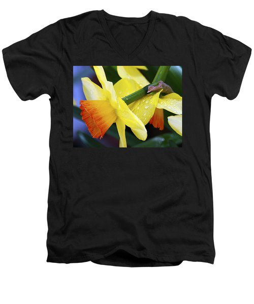 Men's V-Neck T-Shirt featuring the photograph Daffodils With Rain by Joe Schofield