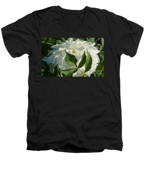 Dahlia Delicate Dancer Men's V-Neck T-Shirt by Susan Garren