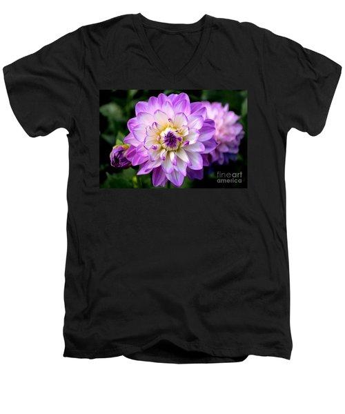 Dahlia Flower With Purple Tips Men's V-Neck T-Shirt