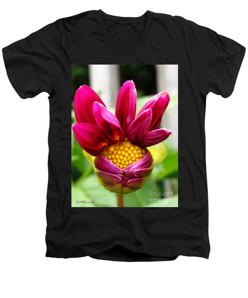 Men's V-Neck T-Shirt featuring the photograph Dahlia From The Showpiece Mix by J McCombie