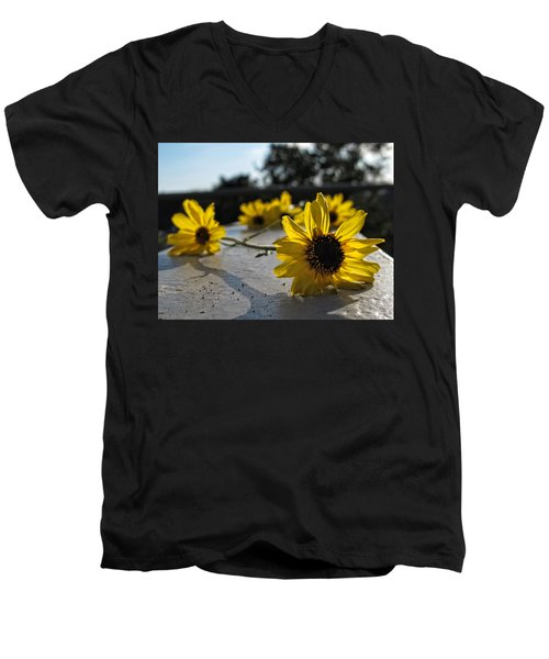 Daisy Daisy Give Me Your Answer Men's V-Neck T-Shirt