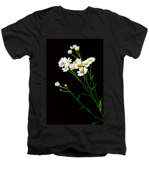 Daisy Flower Bouquet  Men's V-Neck T-Shirt