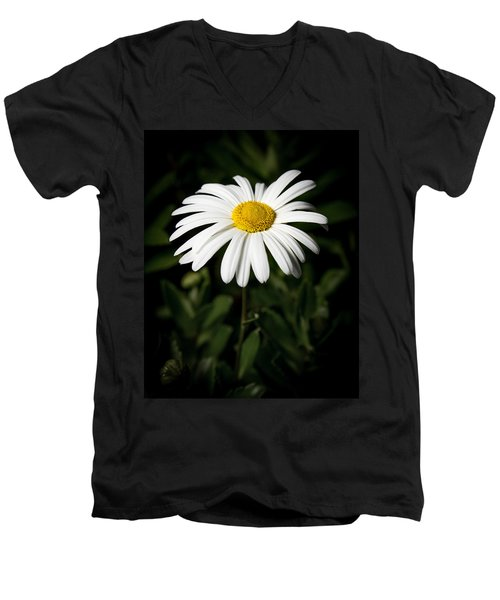 Daisy In The Garden Men's V-Neck T-Shirt