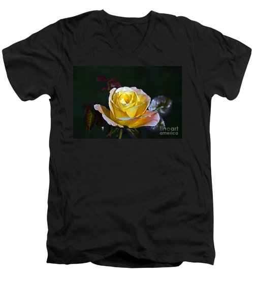 Men's V-Neck T-Shirt featuring the photograph Day Breaker Rose by Kate Brown