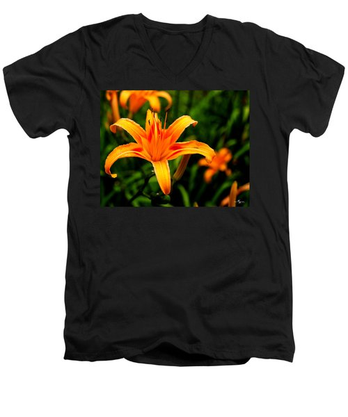 Day Lily Men's V-Neck T-Shirt