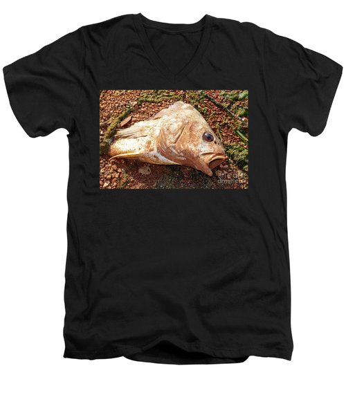 Dead Or Alive? Men's V-Neck T-Shirt