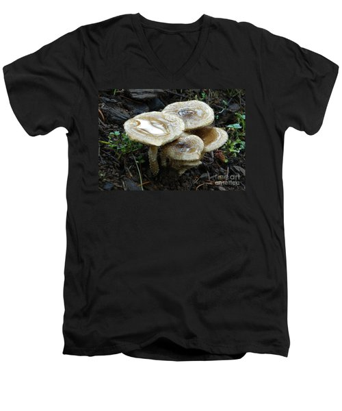 Men's V-Neck T-Shirt featuring the photograph Deadly Beauty 1 by Chalet Roome-Rigdon