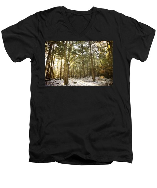 Men's V-Neck T-Shirt featuring the photograph Deep In The Forest by Alana Ranney