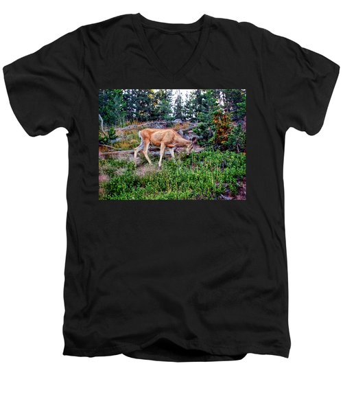 Men's V-Neck T-Shirt featuring the photograph Deer 1 by Dawn Eshelman