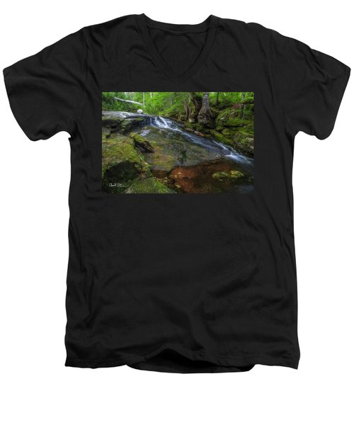 Deer Creek Men's V-Neck T-Shirt by Charlie Duncan
