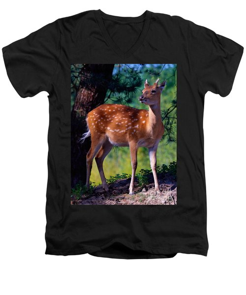 Deer In The Woods Men's V-Neck T-Shirt