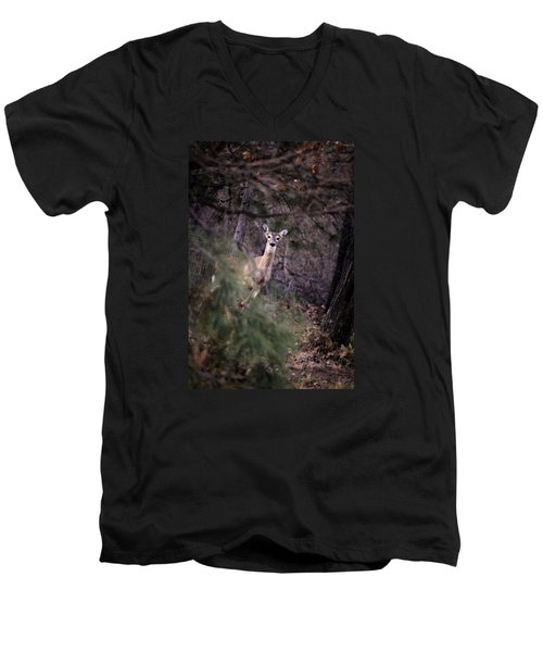Men's V-Neck T-Shirt featuring the photograph Deer's Stomping Grounds. by Joshua Martin