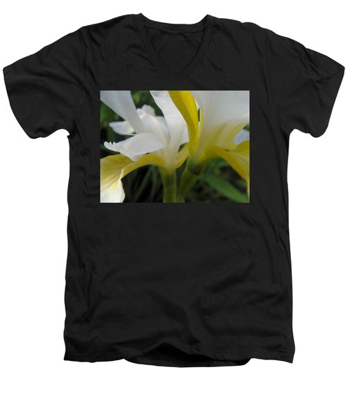 Delicate Iris Men's V-Neck T-Shirt by Cheryl Hoyle