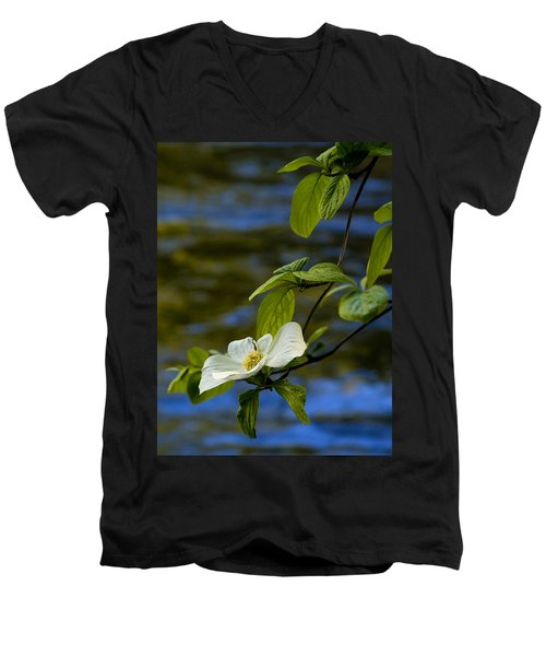 Dogwood On The Merced Men's V-Neck T-Shirt