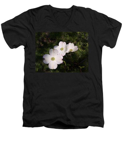 Dogwood Men's V-Neck T-Shirt