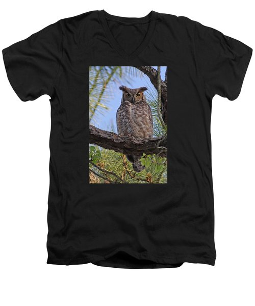 Men's V-Neck T-Shirt featuring the photograph Don't Mess With My Chicks #2 by Paul Rebmann