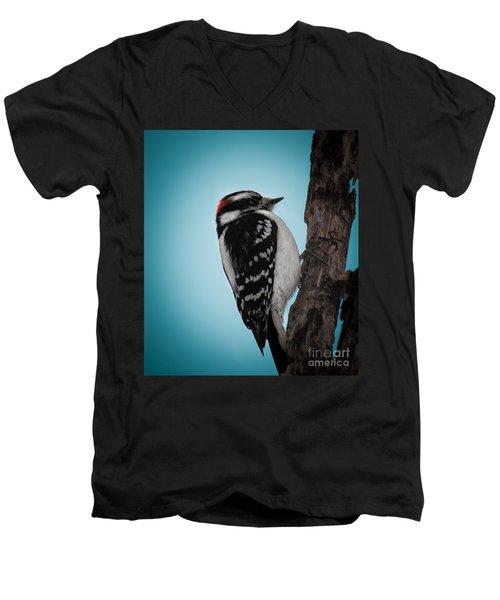Downy Men's V-Neck T-Shirt