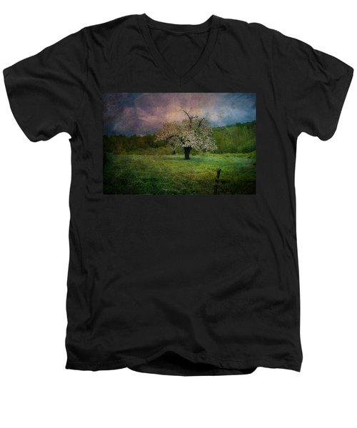 Dream Of Spring Men's V-Neck T-Shirt