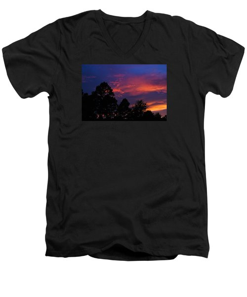 Men's V-Neck T-Shirt featuring the photograph Dreaming Of Mobile by Julie Andel