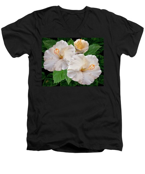 Dreamy Blooms - White Hibiscus Men's V-Neck T-Shirt by Ben and Raisa Gertsberg