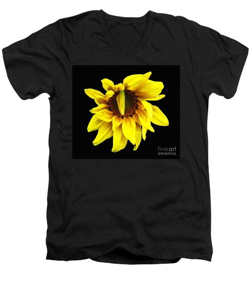 Men's V-Neck T-Shirt featuring the photograph Droops Sunflower With Oil Painting Effect by Rose Santuci-Sofranko