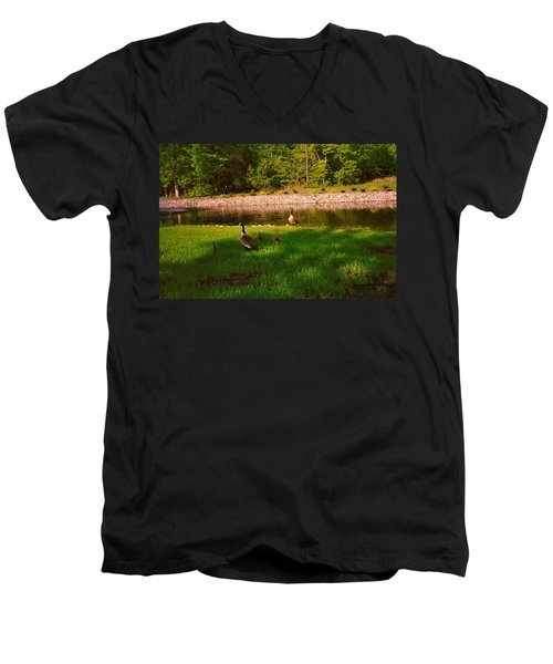 Duck Family Getting Back From Pond Men's V-Neck T-Shirt by Amazing Photographs AKA Christian Wilson