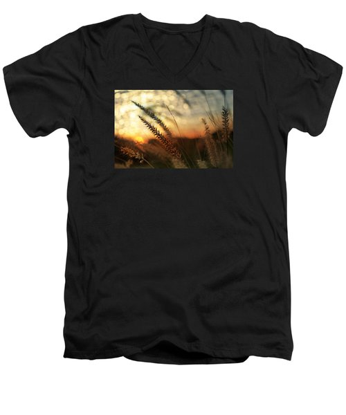 Dune Men's V-Neck T-Shirt by Laura Fasulo