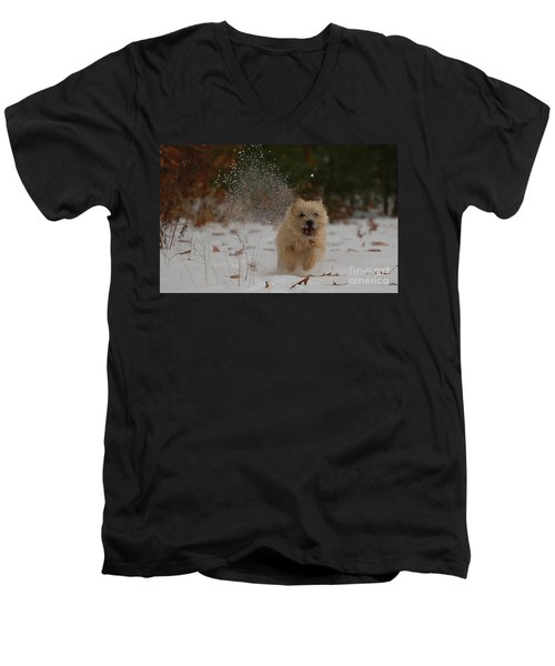 Dusted Men's V-Neck T-Shirt by Molly Poole