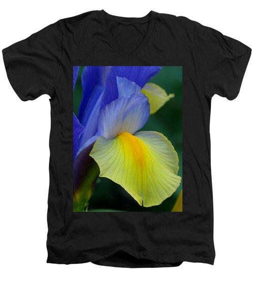 Dutch Beauty Men's V-Neck T-Shirt by Jennifer Wheatley Wolf