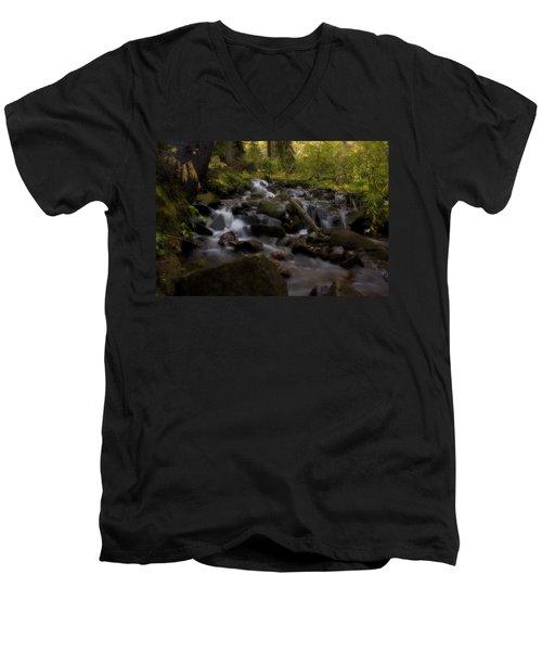 Men's V-Neck T-Shirt featuring the photograph Early Autumn Cascades by Ellen Heaverlo
