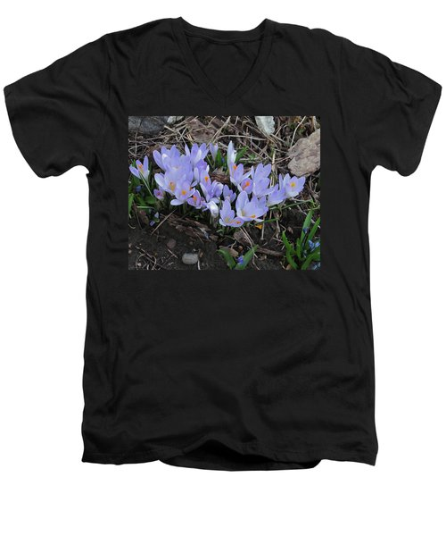 Early Crocuses Men's V-Neck T-Shirt by Donald S Hall