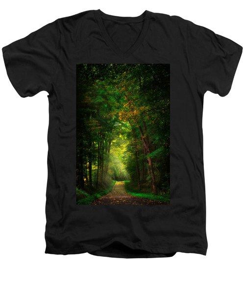 Early  Mist  Men's V-Neck T-Shirt