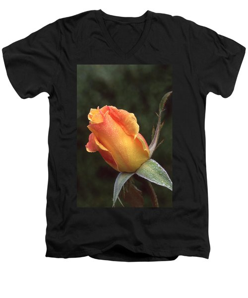 Early Morning Rosebud Men's V-Neck T-Shirt