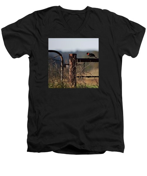 Eary Morning Blackbird Men's V-Neck T-Shirt