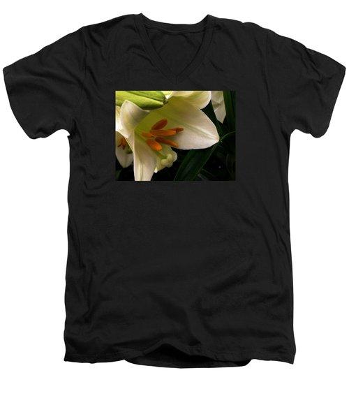 Easter 2014-4 Men's V-Neck T-Shirt by Jeff Iverson