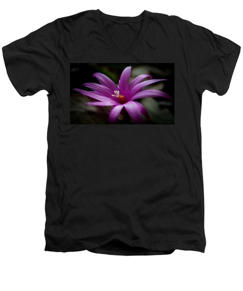 Easter Rose Men's V-Neck T-Shirt