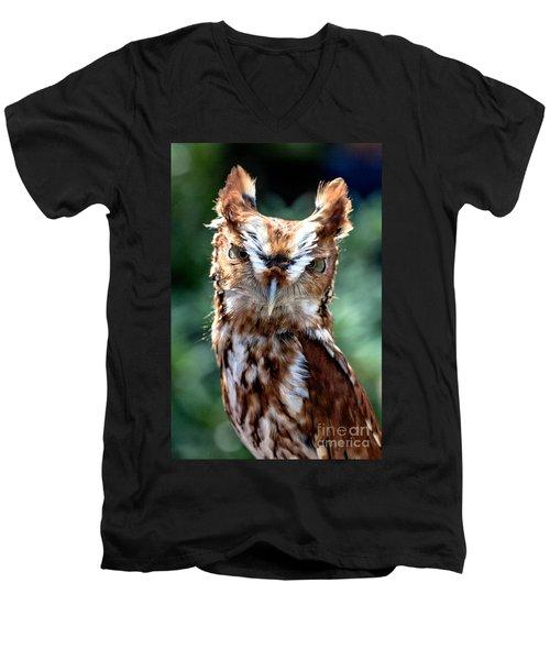Eastern Screech-owl Men's V-Neck T-Shirt